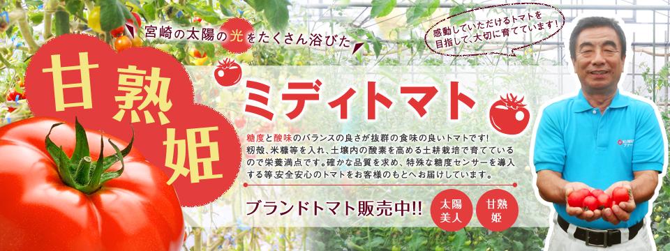 宮崎の太陽の光をたくさん浴びた甘熟姫ミディトマト